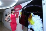 LG launches new OLED TVs in Taiwan