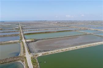 A PV power station will be set up on Tainan's fish culture ponds
